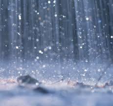 Vento e chuva causam danos em Capitão
