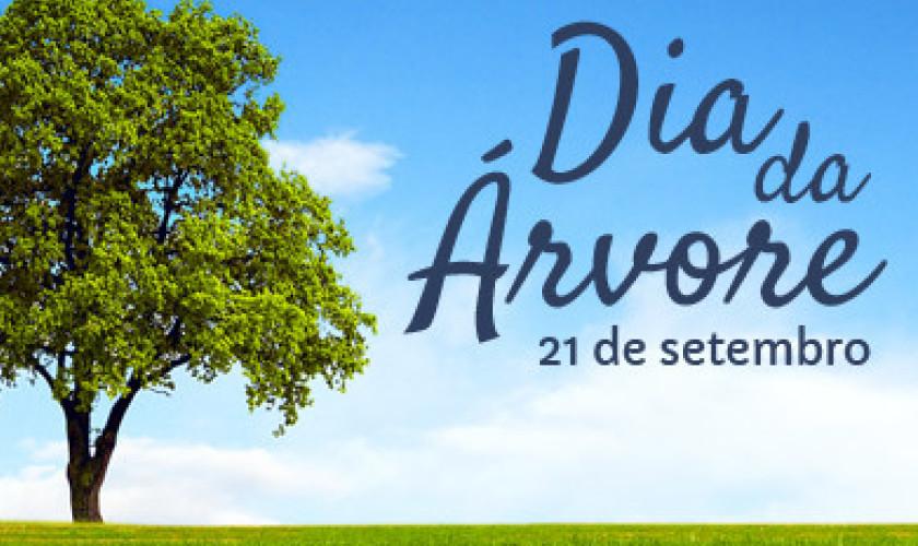 Ações junto às escolas municipais e comunidade marcam o Dia da Árvore em Capitão