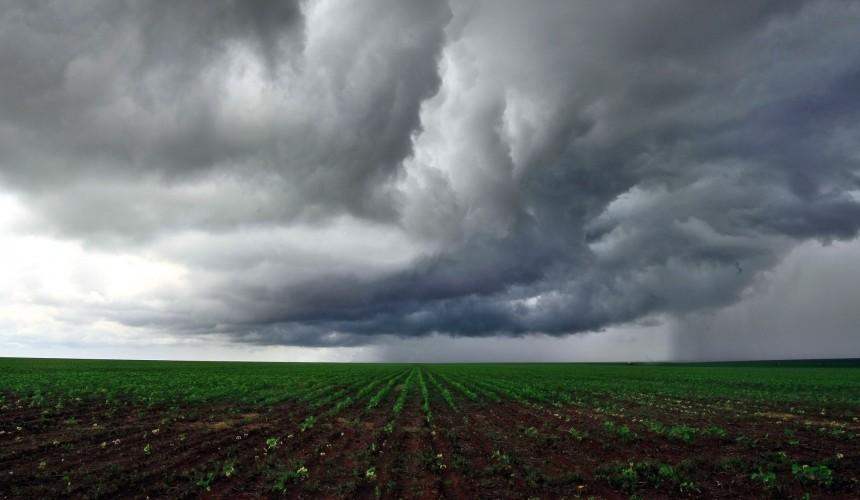 Agrônomo de Capitão alerta para riscos trazidos pelo excesso de chuva na região